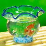 春夏秋冬 季節に合わせた金魚の世話 エサやり・水温管理