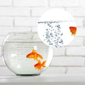 金魚鉢の酸素